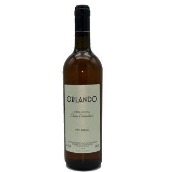 orlando-orlandini