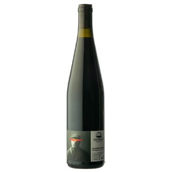 'QUARTOPROTOCOLLO' - Vino Rosso - 2019 - Colbacco